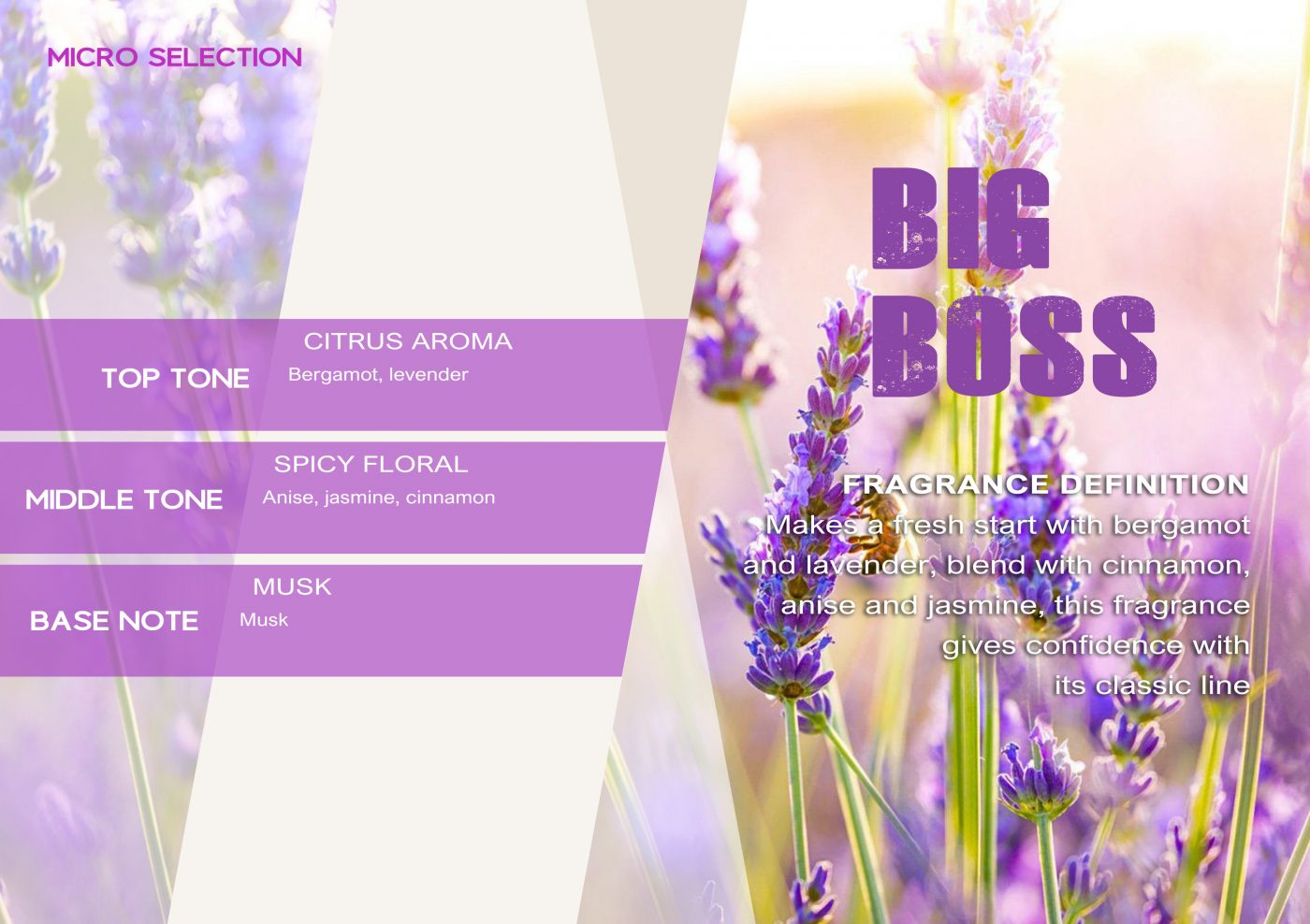MICROSELECTION Fragrance BIG BOSS VE - EN