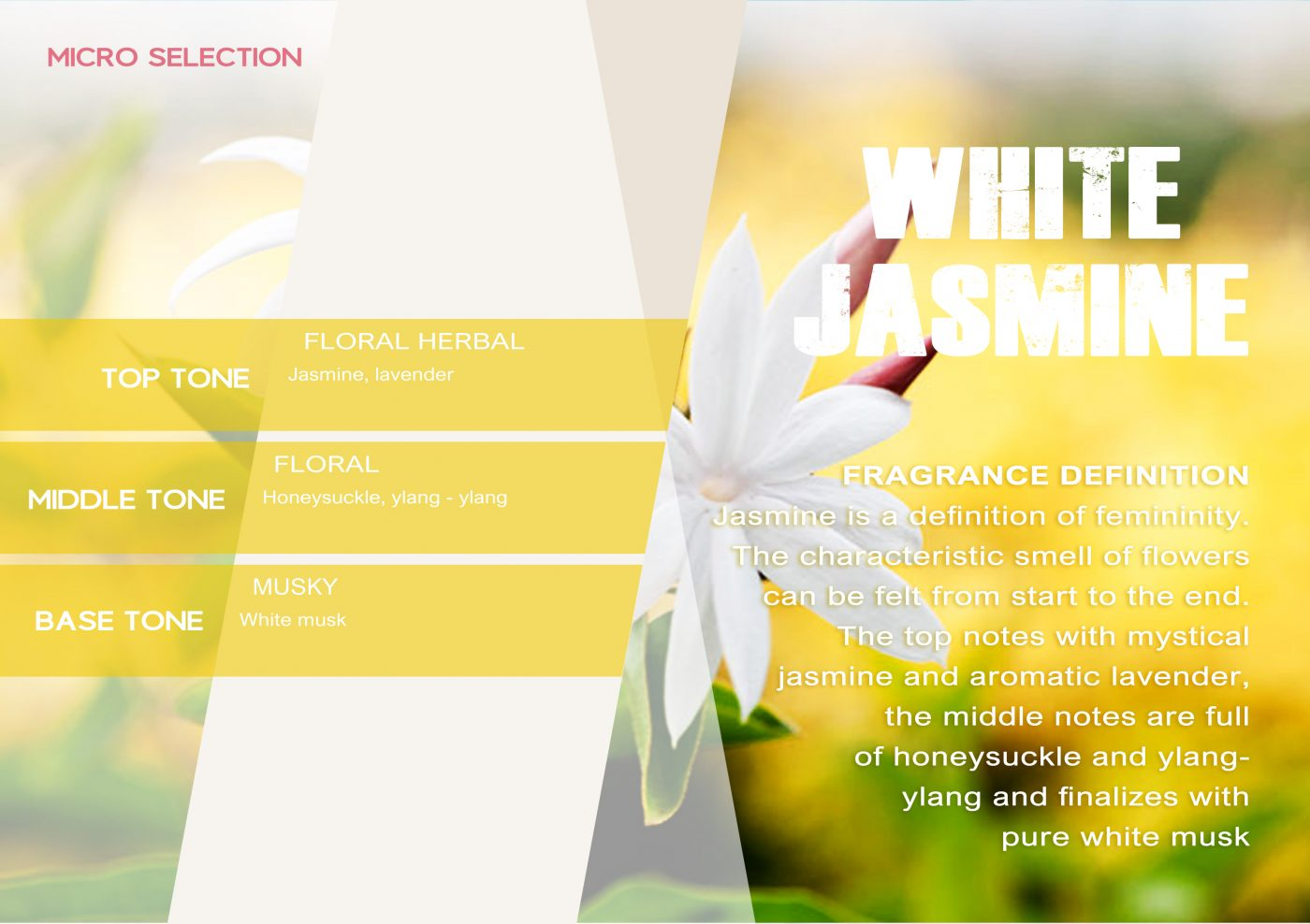 MICROSELECTION Fragrance WHITE JASMINE VE - EN