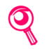 ikona audit